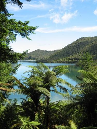 New Zealand 040